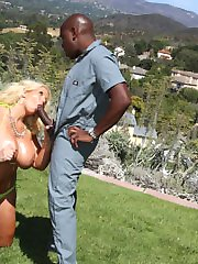 Welcome To Blacks On Cougars!