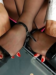 Hot business lady licking every toe without taking off her black pantyhose