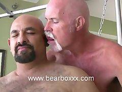 BearBoxxx