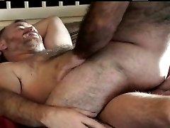 hairy bears 2