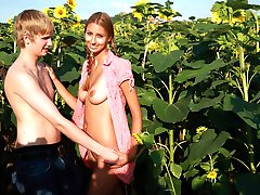 Behind the tall sunflower plants, these teens are able to hide their naughty acts. They cant...