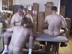 Cyberbears - Bears At Work