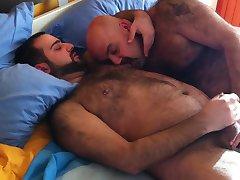 Osos en la cama 1