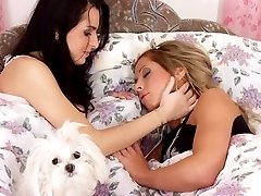Lustful lesbian perverts gets naked on bed indulging in mad tongue play