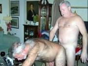 Mature Gay Men, Porn, Bear
