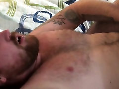 Chub wolf sucking bear before grinding