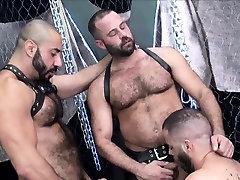 Bear barebacked in hairy threeway