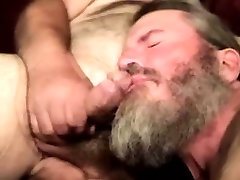 Gaystraight hairy bear sucking hard cock
