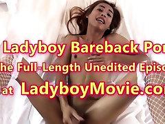 Ladyboy Pink Painful Bareback